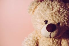 Soft toy `bear` stock images