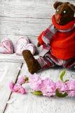 Soft toy bear Stock Photos
