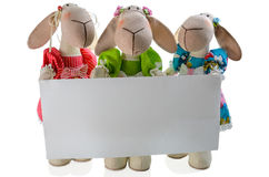 Soft toy with a blank royalty free stock photos