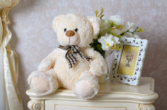 A soft toy. Is a bruin Teddy Royalty Free Stock Photography