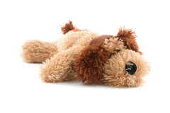 Soft toy dog Stock Images