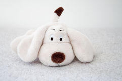 Soft toy dog Stock Photos