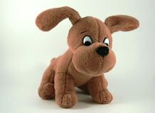 Soft toy dog. Small brown Soft toy dog on white background stock image