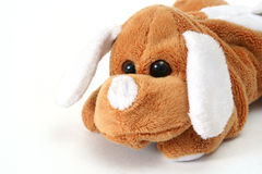 Soft toy dog Royalty Free Stock Image