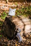 Soft toy dog is chasing an owl in autumn forest Royalty Free Stock Photo