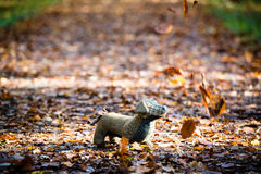 Soft toy dog is placed in autumn forest Royalty Free Stock Image