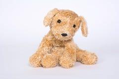 Soft toy doggie isolated on light background.  stock image