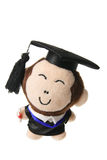 Soft Toy Graduation Monkey Royalty Free Stock Photos