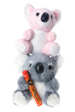 Soft Toy Koalas Stock Photography