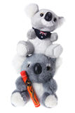 Soft Toy Koalas Stock Photography
