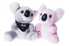 Soft Toy Koalas Stock Image