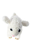 Soft Toy Lamb Royalty Free Stock Photos
