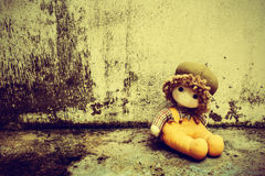 Soft toy on the old grunge wall ,retro and vintage style  Soft f Stock Images