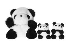 Soft Toy Pandas Royalty Free Stock Photography