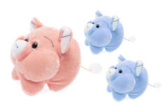 Soft Toy Piggies Royalty Free Stock Photo