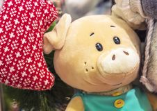A soft toy of a piglet in turquoise clothes royalty free stock photos