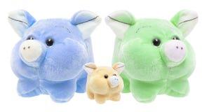 Soft Toy Pigs Stock Photos