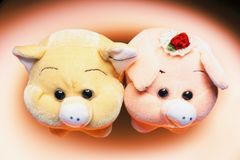Soft Toy Pigs Royalty Free Stock Image