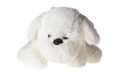 Soft Toy Puppy Stock Photo