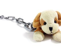 Soft Toy Puppy And Circuit On Stock Photography