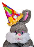 Soft toy a rabbit Royalty Free Stock Image