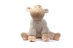 Soft toy sheep. Isolated on white Stock Photo