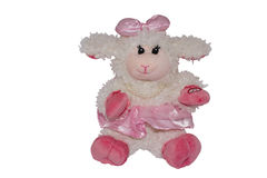 Soft toy sheep Royalty Free Stock Images