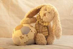 Soft Toy Teddy Stock Photo