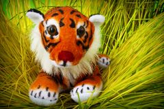 Soft toy tiger stock photos