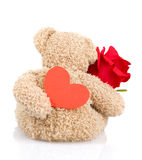 Soft toy for Valentine day Royalty Free Stock Image