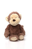 Soft Toy on White Isolated Background. Brown Teddy Sitting on White Isolated Background Royalty Free Stock Images