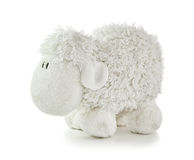 Soft Toy White Lamb. On a white background royalty free stock images
