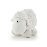Soft Toy White Lamb. Isolated on a white background royalty free stock photo