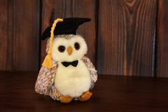 Soft toy on wooden background. Owl royalty free stock image