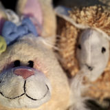 Soft Toys Royalty Free Stock Photo