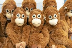 Soft toys of orange monkeys on the counter of a toy store royalty free stock images