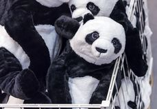 Soft toys panda bear in the basket of a toy store royalty free stock photography