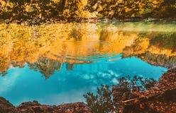 Soft view autumn landscape, autumnal park, fall nature. Stock Photo