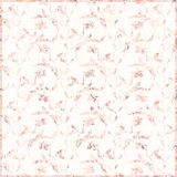 Soft vintage antique distressed shabby floral pattern background in peach Stock Photos