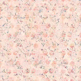 Soft vintage antique distressed shabby floral pattern background in peach Stock Photography