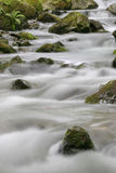 Soft water. The mountain creek Lauch in the Vosges mountains - Alsace - France Stock Images
