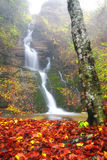 Soft waterfall. Waterfall in autumn with red leaves Stock Images