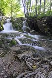 Soft waterfalls in the forest. Royalty Free Stock Images