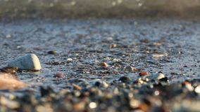 Soft wave of the sea on the sandy beach. Soft wave of the sea on the beach with black sand stock video