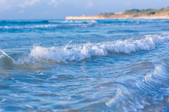 Soft wave of the sea on a sandy beach Stock Images