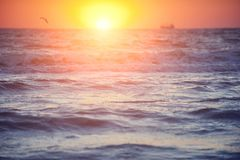 Soft wave of sea at sunset. Soft wave of sea at warm gold sunset light. Selective focus Royalty Free Stock Photos