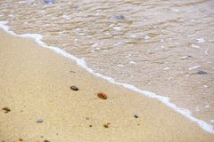 Soft waves of the sea on the sand beach. Selective Focus royalty free stock photo