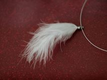 soft white feather jewelry Royalty Free Stock Image
