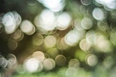 Soft colored abstract bokeh background royalty free stock image