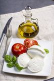 Soft white Italian cheese Mozzarella buffalo served with fresh tomato, olive oil and green basil leaves stock image